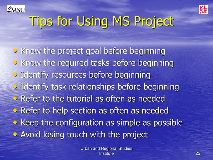 Tips for Using MS Project