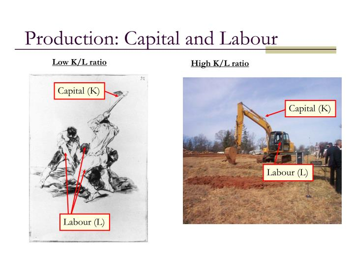 Production: Capital and Labour