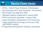 electric power sector