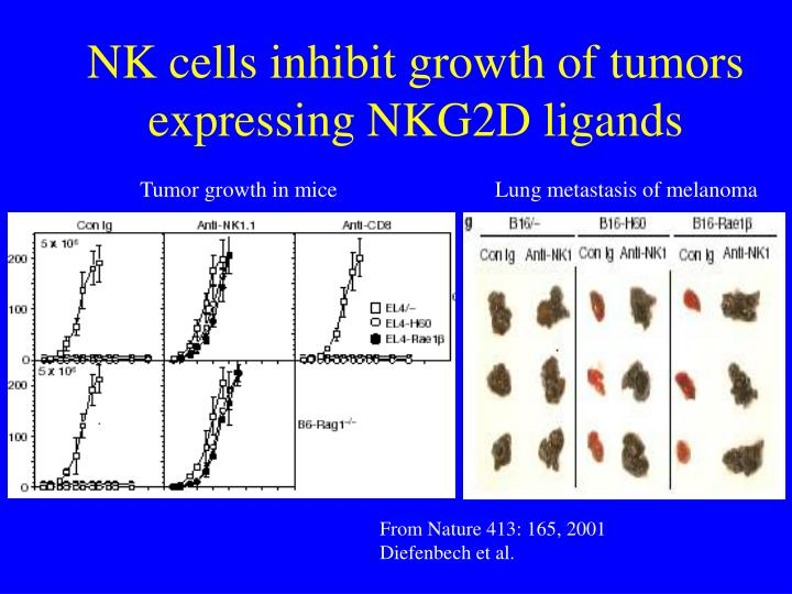 NK cells inhibit growth of tumors expressing NKG2D ligands