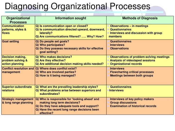 Diagnosing Organizational Processes
