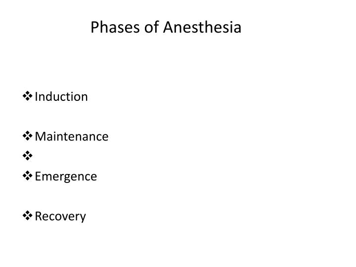 Phases of Anesthesia