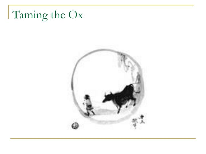 Taming the Ox