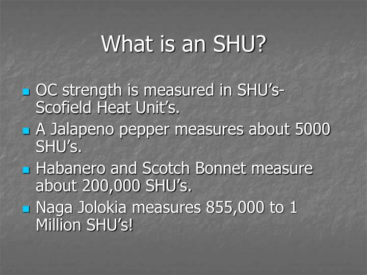 What is an SHU?