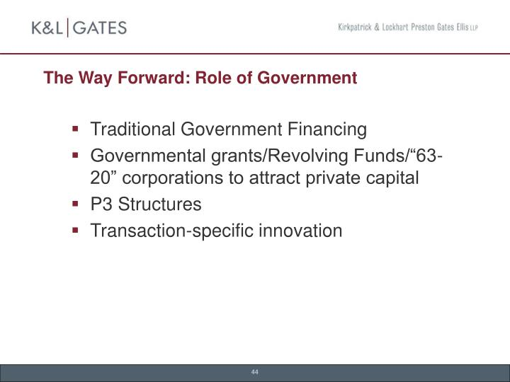 The Way Forward: Role of Government
