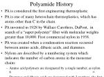 polyamide history1