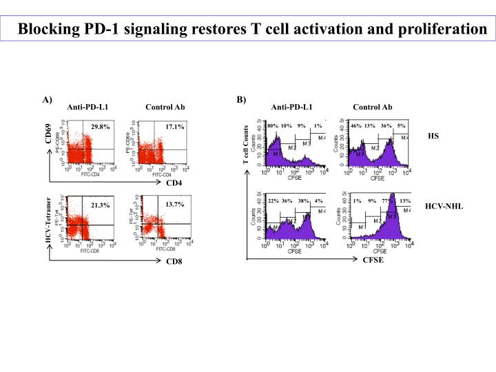 Blocking PD-1 signaling restores T cell activation and proliferation