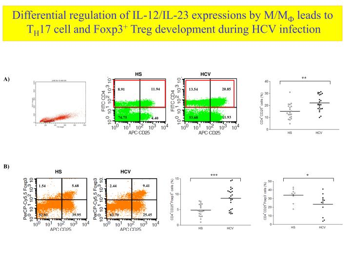 Differential regulation of IL-12/IL-23 expressions by M/M