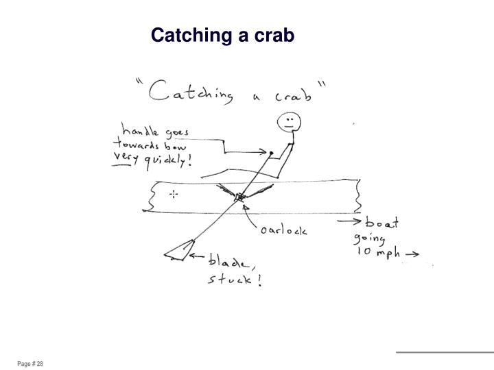 Catching a crab
