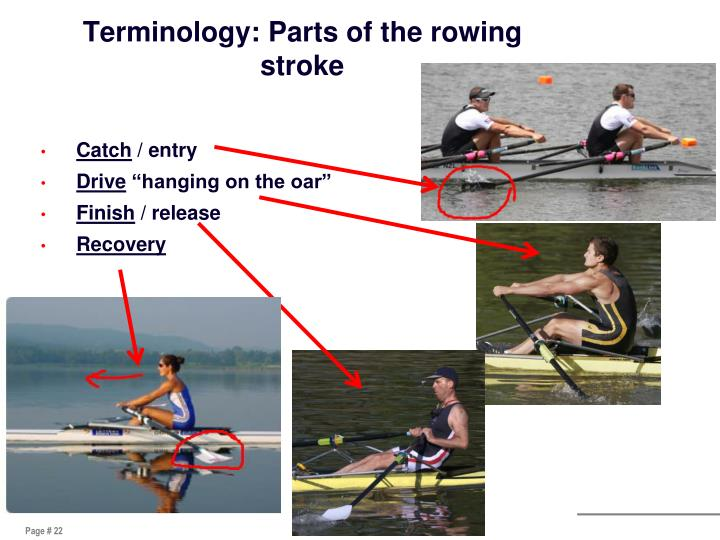 Terminology: Parts of the rowing stroke