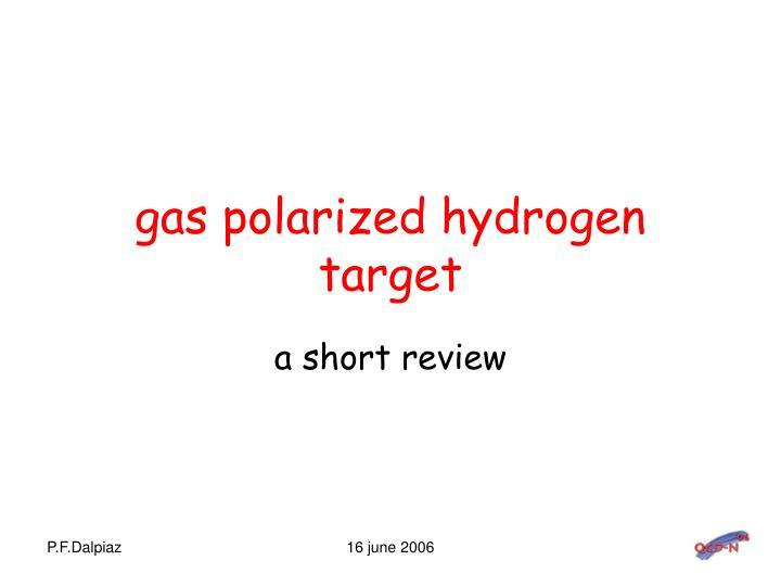 gas polarized hydrogen target