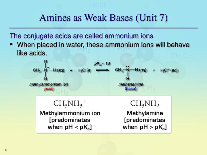 Amines as Weak Bases (Unit 7)
