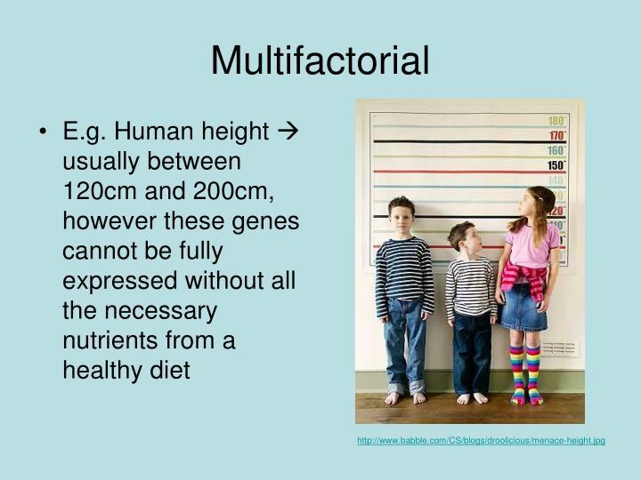 E.g. Human height