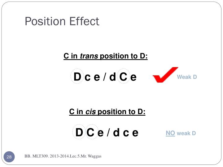 Position Effect