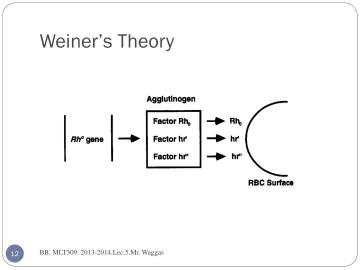 Weiner's Theory