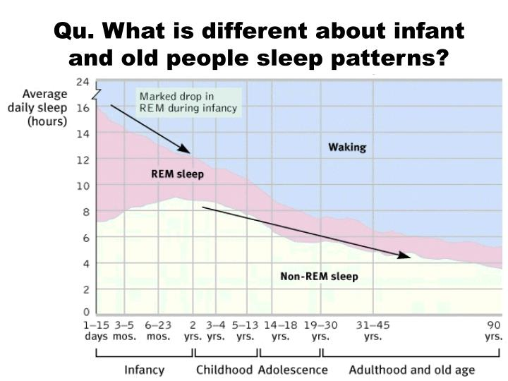 Qu. What is different about infant and old people sleep patterns?