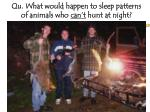 qu what would happen to sleep patterns of animals who can t hunt at night