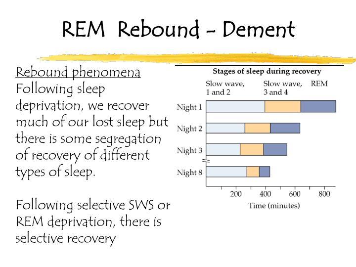 REM  Rebound - Dement