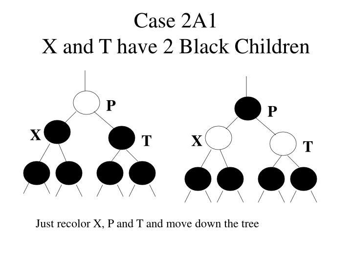 Case 2A1