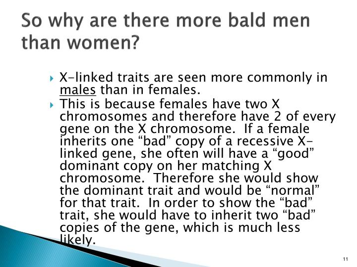 So why are there more bald men than women?