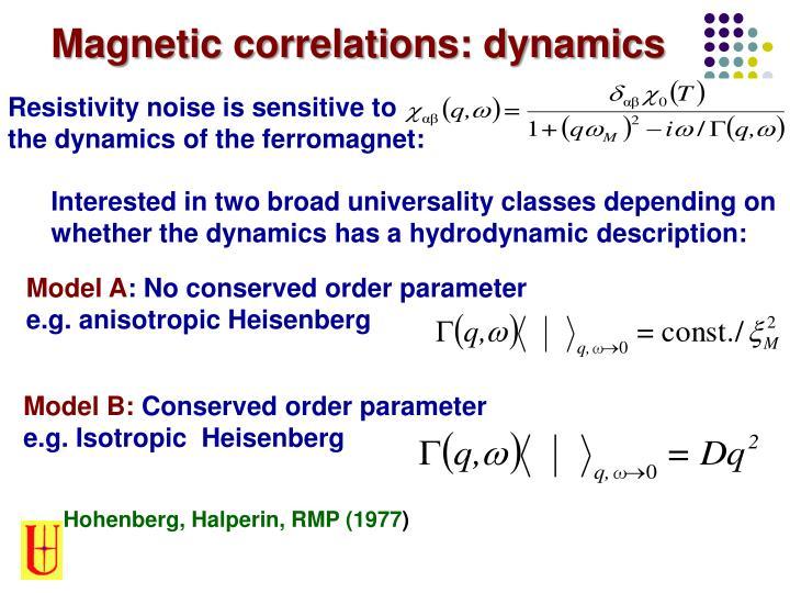 Magnetic correlations: dynamics