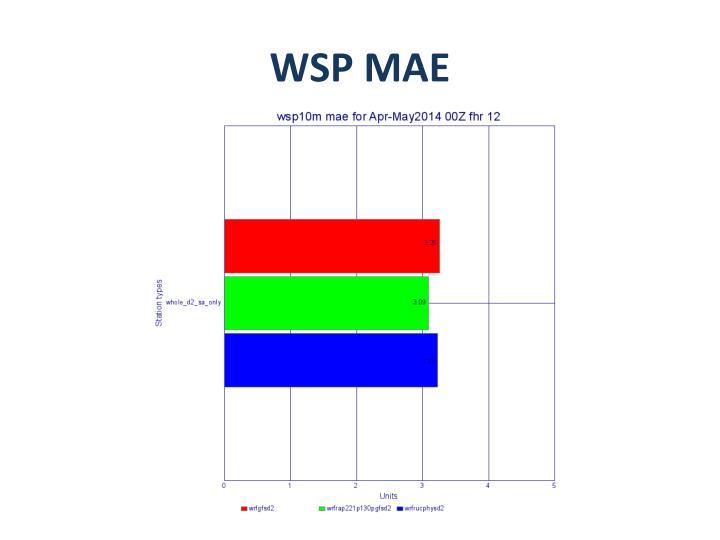WSP MAE