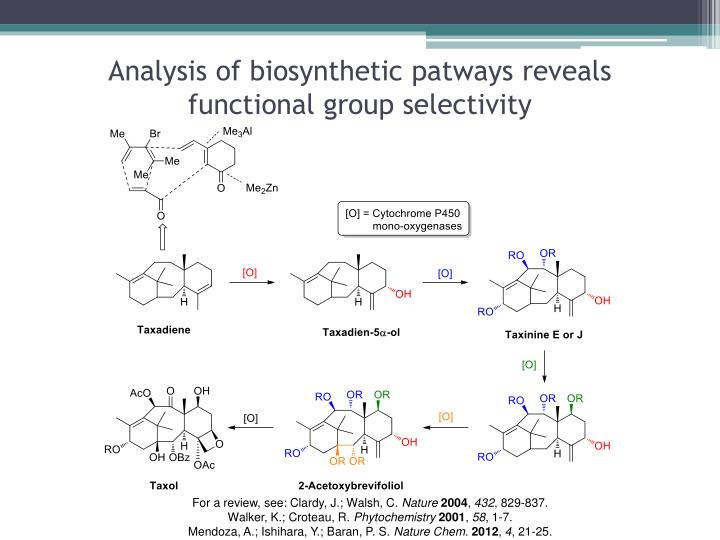 Analysis of biosynthetic patways reveals functional group selectivity