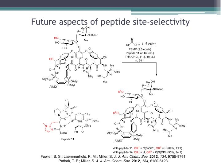 Future aspects of peptide site-