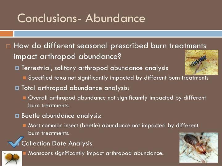 Conclusions- Abundance