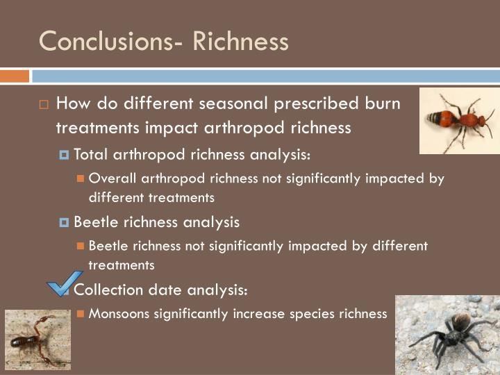 Conclusions- Richness