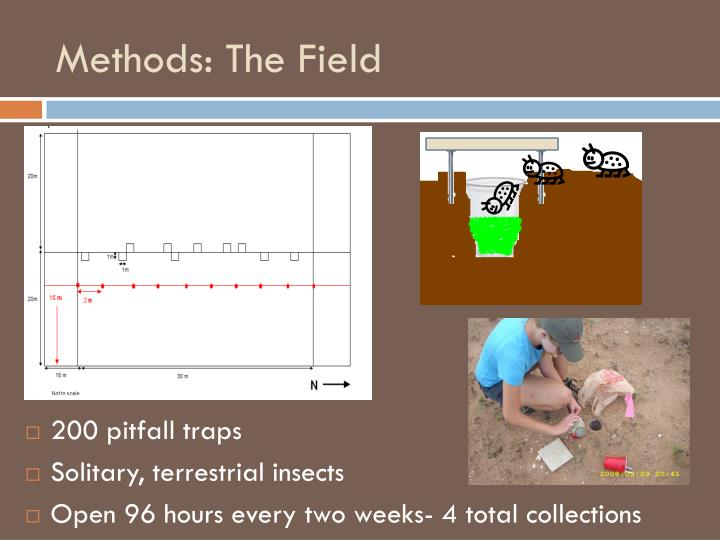 Methods: The Field
