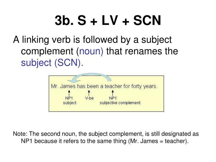 3b. S + LV + SCN
