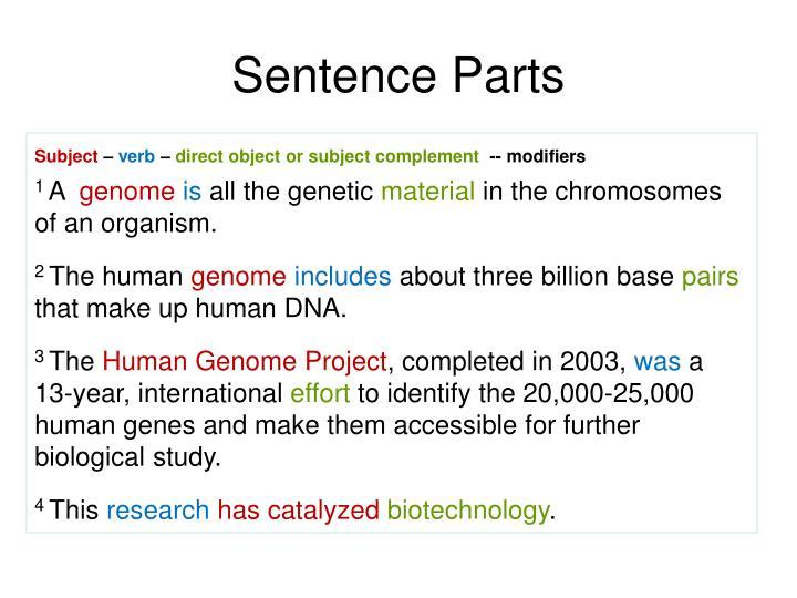 Sentence Parts