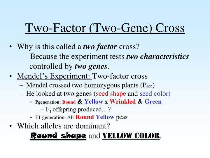 Two-Factor (Two-Gene) Cross