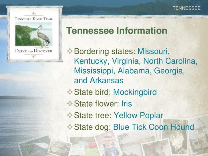 Tennessee Information