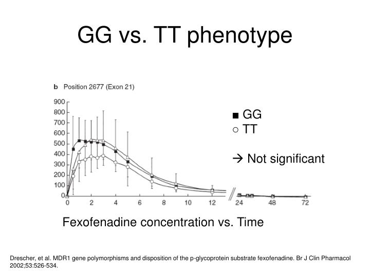 GG vs. TT phenotype