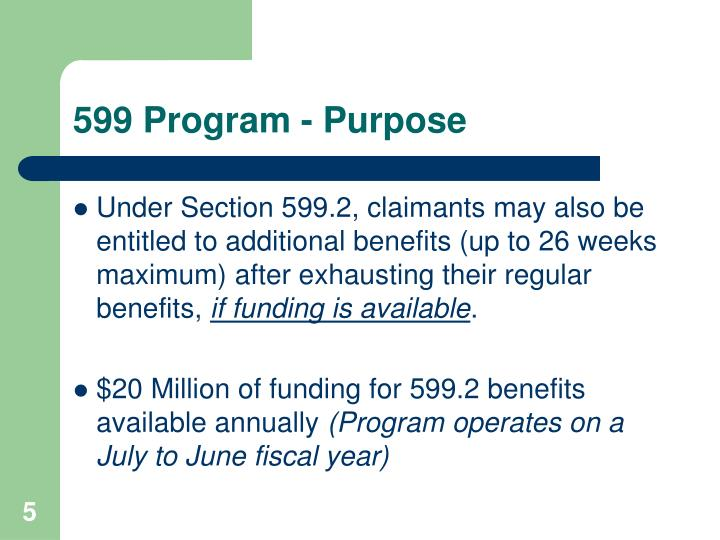 599 Program - Purpose