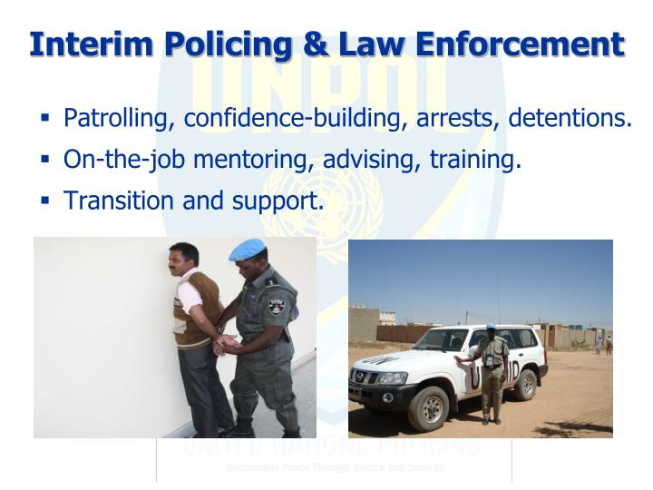 Interim Policing & Law Enforcement