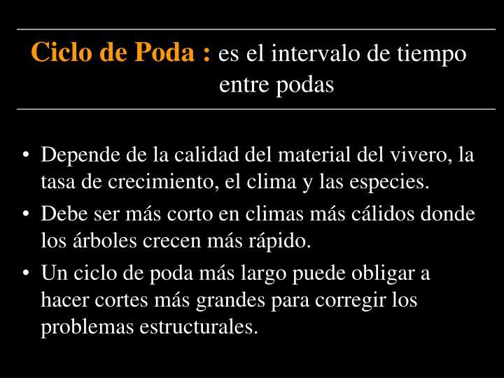 Ciclo de Poda :
