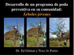 desarrollo de un programa de poda preventiva en su comunidad rboles j venes