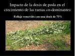 impacto de la dosis de poda en el crecimiento de las ramas co dominantes1