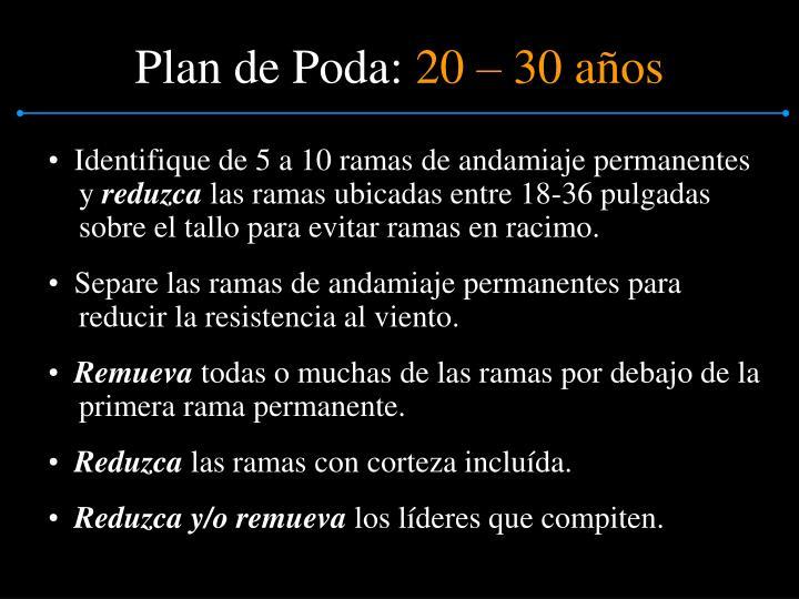 Plan de Poda: