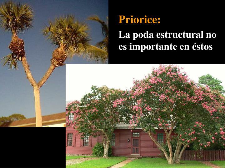 Priorice: