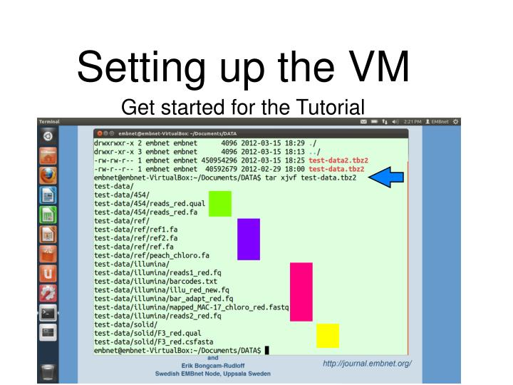 Setting up the VM