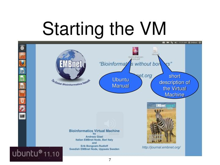 Starting the VM