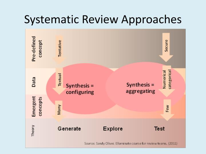 Systematic Review Approaches