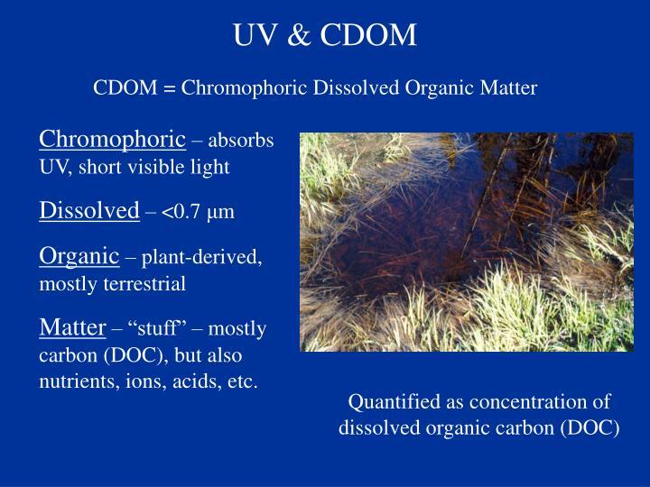 UV & CDOM