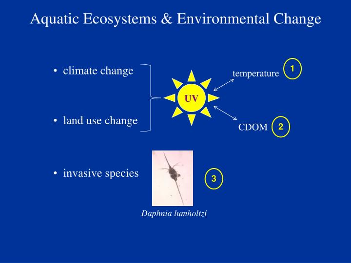 Aquatic Ecosystems & Environmental Change
