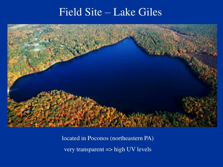 Field Site – Lake Giles