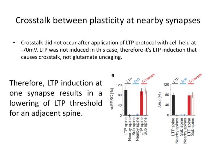 Crosstalk between plasticity at nearby synapses